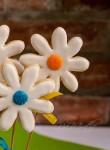 Wiosenne kwiatki – ciastka kruche – maślane