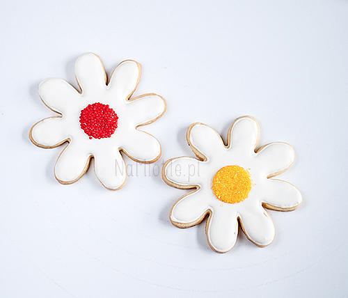 kwiatek_nm2-2c