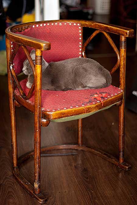 krzeslo_nm10